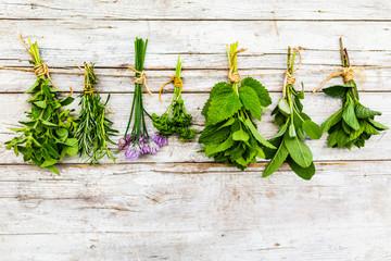 Fresh herbs prepared for drying.