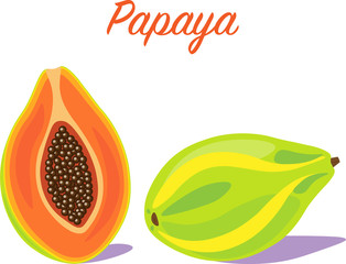 Vector illustration of а Papaya fruit. Whole and cut with shadows on a white background.