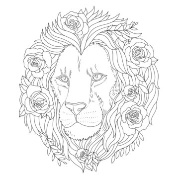 Lion with flowers coloring book illustration. Lion coloring page. Vector outline illustration. Anti stress coloring book. Lion print.