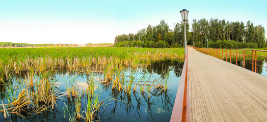 Wall Mural - Summer landscape of lake and wooden foot bridge. Beautiful view of island, pedestrian walkway over water and sedge of marsh coast. Lake Chebarkul, South Ural, Russia.