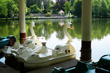 Pedal boats in the form of a swan on a lake