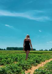 Junge blonde Frau geht durch ein Erdbeerfeld mit reifen Erdbeeren. Standort: Deutschland, Nordrhein-Westfalen, Heiden