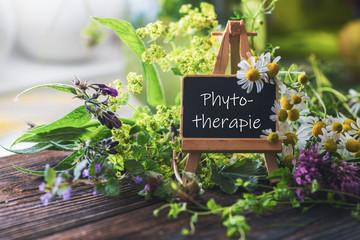 Schild mit Heilpflanzen: Phytotherapie