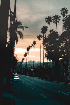 Sunset Boulevard In Los Angeles During Sunet