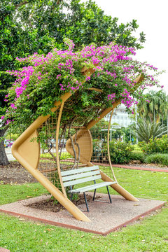 One of the beautiful bougainvillea-covered benches of Darwin's Bicentennial Park, Australia