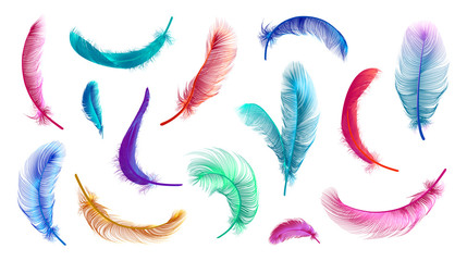 Vector feathers collection, set of different falling fluffy twirled feathers, isolated on transparent background. Realistic style, vector 3d illustration Fototapete