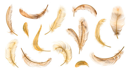 Vector feathers collection, set of different falling fluffy twirled feathers, isolated on transparent background. Realistic style, vector 3d illustration Wall mural