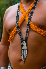 Embera Ethnic Group Community, Chagres River, Chagres National Park, Colon Province, Panama, Central America, America