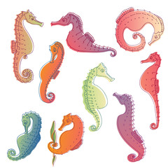 Set of images of sea horses. Vector illustration.
