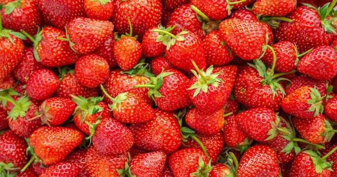 Fresh organic Strawberry fruit background Top view closeup