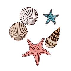 cute seashells on the sea in white background