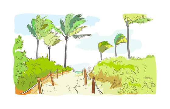 palm beach road sketch watercolor green clip art