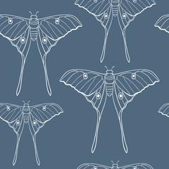Butterfly on blue seamless pattern