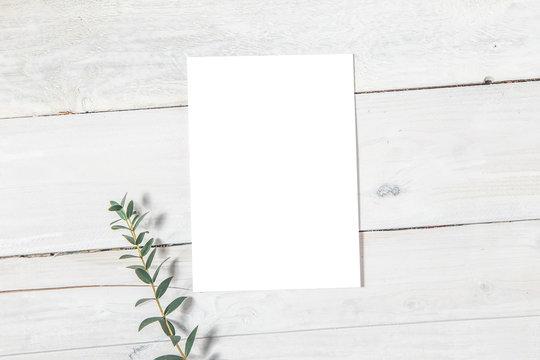 Wedding Invitation Mockup, Blank Invitation Card with a Sprig of Eucalyptus