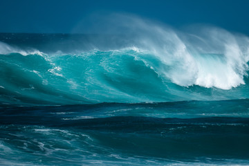 Powerfull wave of the North Shore of Oahu, Hawaii