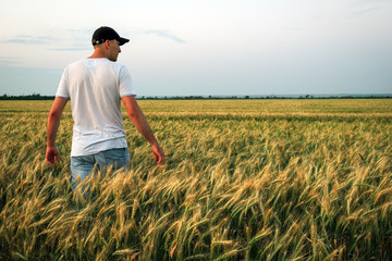 Male farmer standing in a wheat field during sunset. Man Enjoys Nature