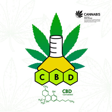 Cannabis for medical vector illustration.