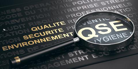 QSE. Qualité, sécurité et Environnement. Gestion des risques Professionnels.