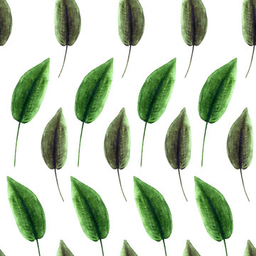 Vintage seamless floral pattern, mid-century modern style. Hand drawn by watercolor.