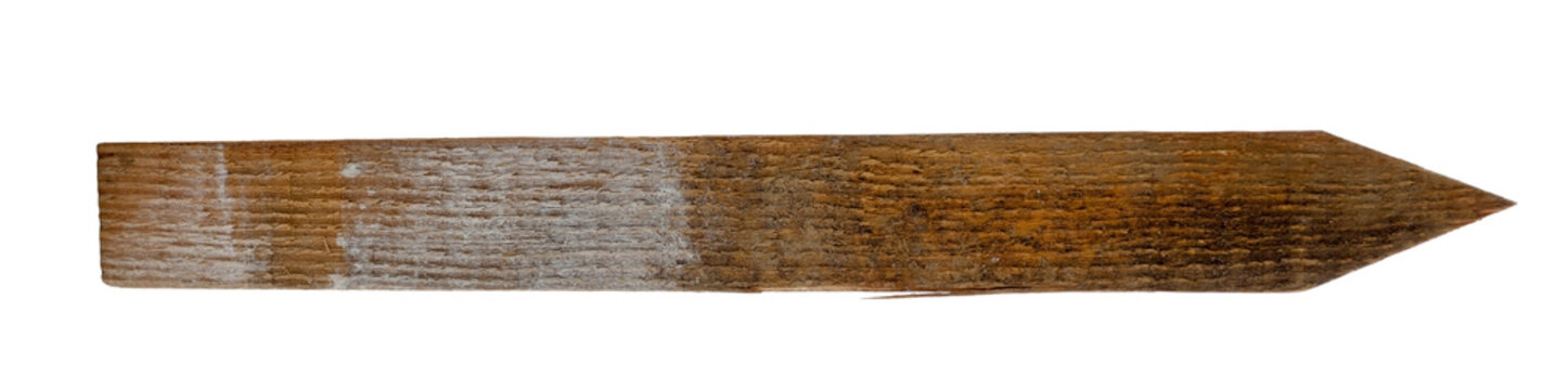 Isolated wood survey stake with pointed end.