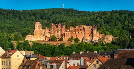 Heidelberger Schloss - Heidelberg Castle