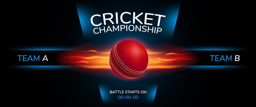 Cricket vector background. Sportive design style banner