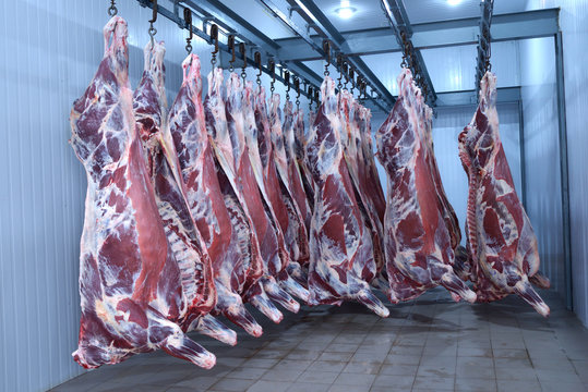 market,animal,fresh,food,freezer,deep,raw,meat,beef,hanging,hooked,cold,storage, meat, flesh, food, blood, clean, carcase, carcass, beef, bovine, skin, flay, raw, butchering, cut, meat, blood, hoist,
