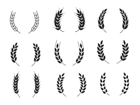 Wheat grains of different shapes set. A set of icons ready to use in your design. Vector icons can be used on different backgrounds. EPS10.