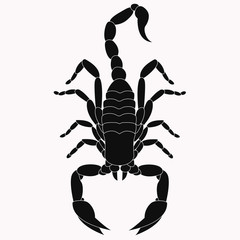 An animal silhouette of a scorpion