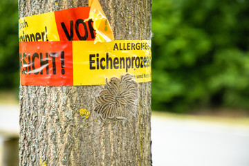 Oak processionary spinner on a tree with warning Wall mural