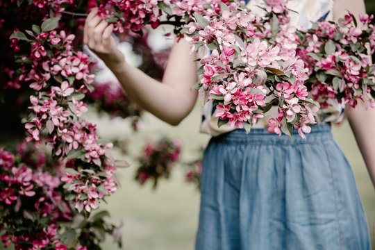 Midsection of young woman holding flower branch