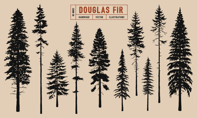 Douglas Fir tree silhouette vector illustration hand drawn	 Wall mural