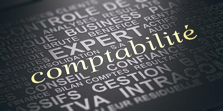 Comptabilité, Expert comptable.