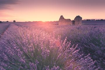 Spoed Fotobehang Lavendel Champ de Lavande
