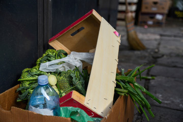 wasted food in garbage