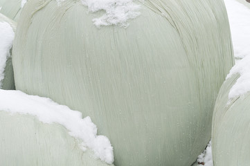 silage wrapped in plastic and covered with snow