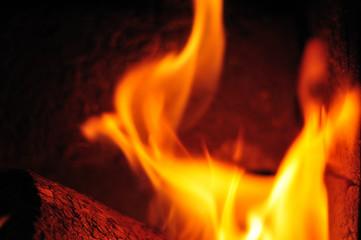 biobriquets fuel burning in furnice