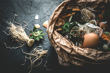 Garbage sorting. Organic food waste from vegetable ready for recycling and to compost on the dark backgrond. Environmentally responsible behavior, ecology concept