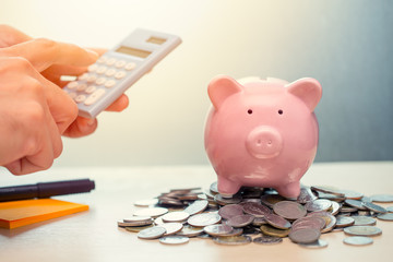 Hand Calculate Saving Money with Piggy bank account Income and Profit with Calculator