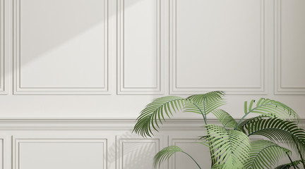 View of the sun light cast shadow on white empty wall with green plant ,Classic interior design. 3D rendering