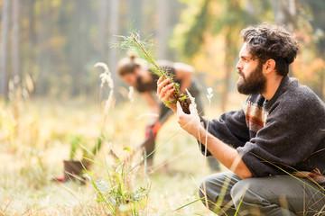 Waldarbeiter kontrolliert Qualität von Setzling
