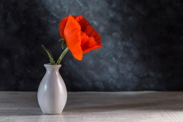 Image with poppy.