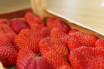Strawberries freshly harvested in a wooden box, beautiful red and fresh