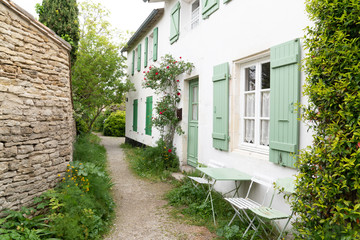 green alley nature in ile de Re island in France