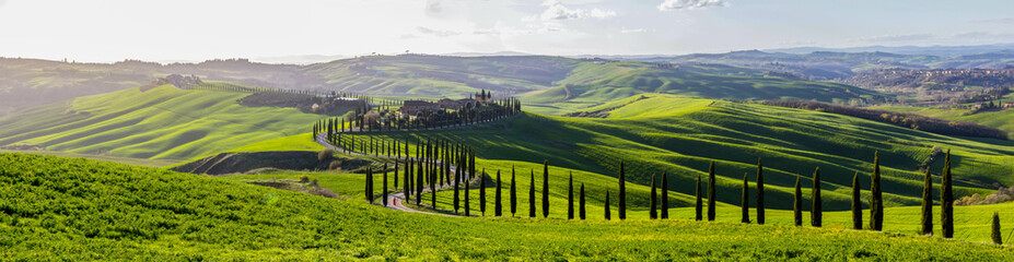 green fields and hills in Tuscany