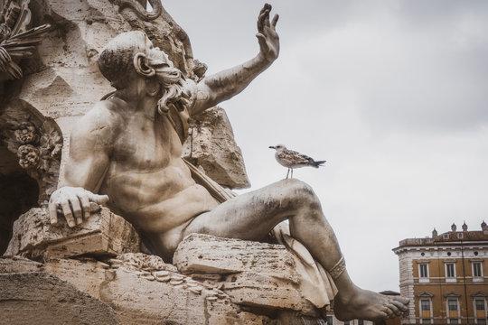 Greek statue and pigeon, Mediterranean