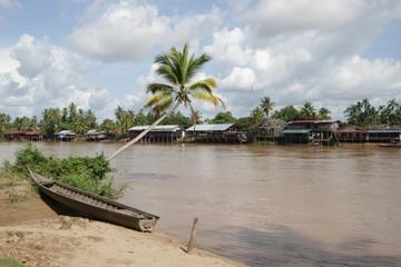 Palme am Mekong