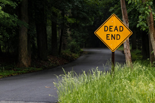 """Yellow """"DEAD END"""" sign next to dark winding road in the middle of nowhere"""