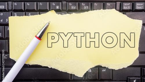 Python programming language  Paper width word Python and
