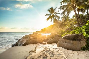 Tuinposter Palm boom Sunset At Anse Intendance, Mahe Island, Seychelles